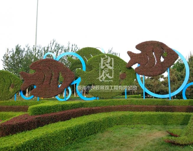 上合组织青岛峰会绿雕造型
