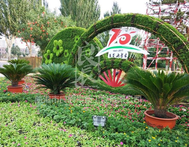 内蒙自治区成立70周年大庆五色草造型