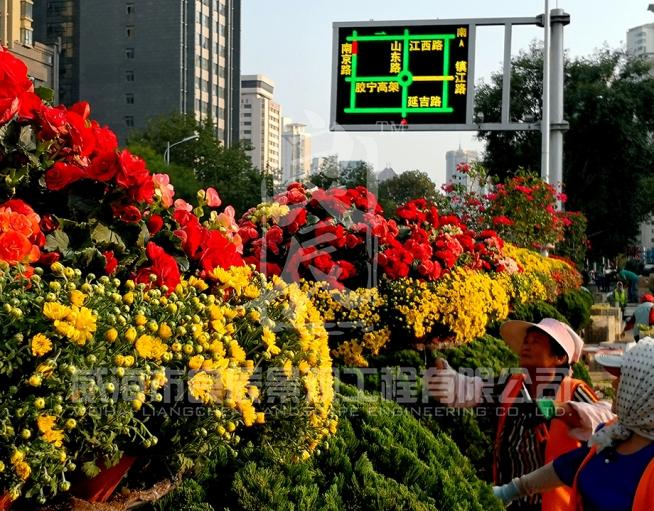 青岛国庆绿雕及花树造型