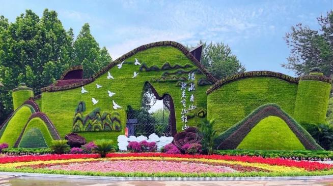 城市美化的最佳首选——五色草造型